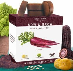 cute gifts for boyfriend - Exotic Vegetables Growing Kit