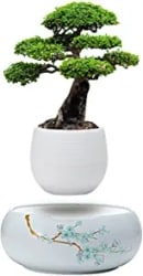 Unique Gifts for Husband - Levitating Mini Plant Pot with Japanese Style Design for Flowers Or Bonsai