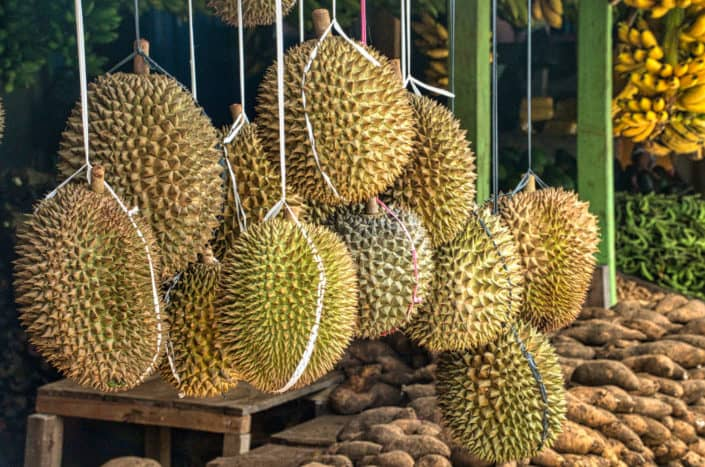 Funny questions - What is the most exotic thing you've ever eaten