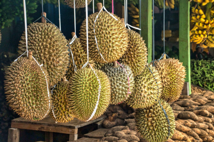 Bunch of durian, hanged for sale.